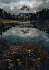 Lago d'Antorno (One_Penny) Tags: dolomiten italien italy alps dolomites landscape mountains mountainscape nature southtyrol lagoantorno lake flowers plants clouds sky peak forest autumn fall colors mirror reflection water leaves