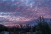 Broad Haven sunrise (20200104 0823)
