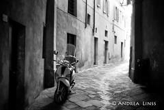 siena ... (andrealinss) Tags: italia italien italy toscana toskana tuscany siena schwarzweiss street streetphotography streetfotografie bw blackandwhite andrealinss 35mm analog leicam6 leica film