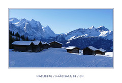 Endlich ... (doro 51) Tags: schnee winter snow mountains berge be ch 2020 hasliberg dorophoto framed gerahmt