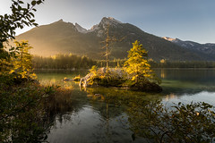 early morning light over Hintersee (hjuengst) Tags: lake sunrise sonnenaufgang hintersee mountain alps reflection island bayern bavaria see berchtesgaden insel berge alpen spiegelung ramsau reflektionen nikond7200 hjuengst