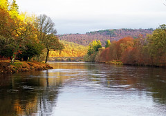 Winter Tones on the river Tay (eric robb niven) Tags: ericrobbniven scotland dunkeld dundee landscape rivertay winter nature springwatch