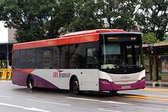 SBS8428Z, Raffles Avenue, Singapore, October 14th 2018 (Southsea_Matt) Tags: sbs8428z sbstransit rafflesavenue singapore october 2018 autumn canon 80d sigma 1850mm bus omnibus transport vehicle scania k230ub gemilang