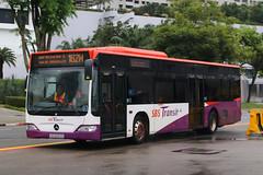 SBS6063E, Raffles Avenue, Singapore, October 14th 2018 (Southsea_Matt) Tags: sbs6063e route162m sbstransit rafflesavenue singapore october 2018 autumn canon 80d sigma 1850mm bus omnibus transport vehicle mercedesbenz o530le citaro