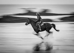 Série cheval de 3: deux (PhlippeC.) Tags: cheval horse monochrome blackwhite noirblanc plage beach bretagne mer sea cavalière