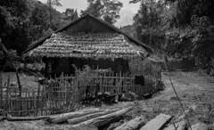 Laos 2019 Leica034