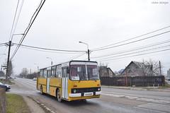 Ikarus 260 - 2283 - 104  - 24.12.2019 (2) (VictorSZi) Tags: romania muntenia bus autobuz ikarus ploiesti tce transport publictransport nikon nikond5300 winter iarna december decembrie