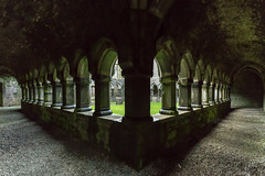 Moyne Abbey (Ronan McCormick) Tags: ilobsterit 2019 canon ireland landscape moyne winter abbey ballina christian church franciscan friary killala mayo ruin wildatlanticway