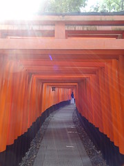 Fushimi Inari Taisha (LauriusLM) Tags: fushimiinaritaisha sanctuairefushimiinaritaisha temple inari fushimi rouge red orange vermillon torii toriis kyoto kyōto kyōtoshi heiankyō sanctuaireshinto sanctuaire kansai japon edo asie asia ville town city architecture pointdevu viewpoint extérieur paysage landscape nature photography photographie vacances holidays travel voyage géo photo photogéo lonely monde gettyimage flickr travelphotography lonelyplanet yahoo wikipedia googleimage imagesgoogle nationalgeographic photoflickr photogoogleearth photosflickr photosyahoo sonycybershotdschx9v potd:country=fr couleurs colors