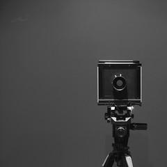 Sinar Large Format (Photo Alan back Feb 12) Tags: vancouver canada format largeformat sinar sinarf filim film filmcamera filmsinar blackwhite blackandwhite monochrome