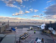 Concourse C, Newark (mswan777) Tags: airport airplane jet tarmac concourse sky cloud evening travel newark new jersey united airlines flight blue skyline ramp tug city urban terminal ewr