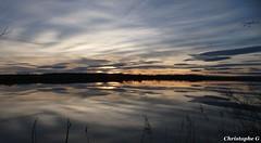Le Rhône...(Sorgues - Vaucluse - 8 mars 2019) (2) (Carnets d'un observateur de la nature du Sud de la) Tags: eau fleuve nature réflection rhône sorgues vaucluse provence