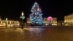 France - Nancy - Christmas tree on Stanislas place (Philippe Larosa) Tags: france nancy stanislas place tree arbre architecture christmas noel light lumière night nuit
