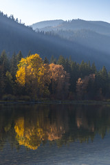 Lake Wenatchee (ValeTer_) Tags: reflection nature natural landscape sky leaf lake tree wilderness water atmospheric phenomenon nikon d7500 wenatchee state park usa wa washington calm nikond7500 autumn lakewenatchee statepark