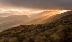 We are Golden 1 DSC_5762 (BlueberryAsh) Tags: newzealand coronetpeak mountains ski resort summer sunset sunrays gold grassess cloudsstormssunsetssunrises clouds nikond750 nikon24120