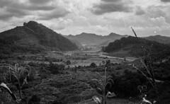 Laos 2019 Leica036