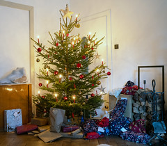 Christmas Tree (Bephep2010) Tags: 2019 35mmf14dghsmart 7markiii aachen alpha deutschland germany ilce7m3 nrw northrhinewestphalia paket sigma sony weihnachten weihnachtsbaum winter christmas christmastree parcel ⍺7iii