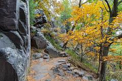 Around the Rocks (Greg Riekens) Tags: trees devilslakestatepark fallcolors usa devilslake nikond500 wisconsin autumn landscape wisconsindells midwest fall statepark rocks