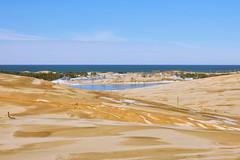 025464a  A Day In The Dunes Between Silver Lake And Lake Michigan (David G. Hoffman) Tags: lake lakeshore lakemichigan dunes clouds