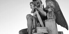 Lisboa | Lisbon | Lisbonne | Lisbona | Lissabon | Лиссабон (António José Rocha) Tags: portugal lisboa cidade capital escultura pedra mármore detalhe arcodotriunfodaruaaugusta mono monocromático pretoebranco bw