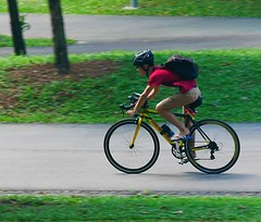 a young cyclist (georgetan_chapter2) Tags: sport exercise outdoor game park people bicycle cycling panning