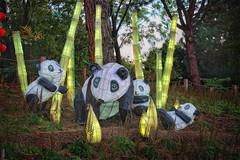 Panda Bear Family (jta1950) Tags: ststue figurine panda montrealbotanicalgarden gardenoflight trees light d600