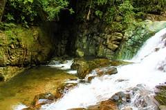 Cascada Gallo de la Peña (Oscar Padilla Álvarez) Tags: ecuador