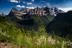 Glacier National Park 1 (ninagkraftphotos) Tags: snow trees valley bluesky clouds waterfall montana glaciernationalpark nationalpark travel adventure landscape mountain outdoor outdoorphotography landscapephotograhpy travelphotography traveling hiking