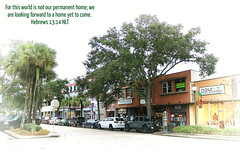 MELBOURNE, FL (Humble Christ Follower) Tags: melbourne florida fl fla brevardcounty brevard spacecoast downtown historic vignette trees buildings stores shops historicdistrict downtownmelbourne white street road cars centralflorida us usa unitedstates america travel landscape cityscape urban skyline city jesus christ lord god bible scripture verse