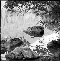 Austria_Hasselblad 500C/M (ksadjina) Tags: 6x6 carlzeisssonnar150mmf14 deutschland hasselblad500cm hintersee kodak400tmax nikonsupercoolscan9000ed ramsau silverfast analog blackwhite film scan