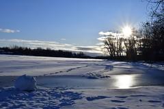 Rivière des Mille-ïles, Québec (AlainC3) Tags: paysage rivière milleîles river thousandisland québec rosemère eau water soleil sun neige snow glace ice nikond7500 nuages clouds hiver winter