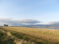 Farmland, Black Isle, New Years Day 2020 (allanmaciver) Tags: farmland new years day 2020 black isle highlands field low view sunshine colours clouds cromarty firth allanmaciver