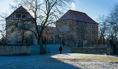 A frosty day (Lense23) Tags: crazytuesday winter frost cold kalt germany deutschland gegenlicht backlit apolda thüringen hct