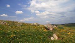 Aubrac (Yvan LEMEUR) Tags: aubrac landscape paysage nasbinals marchastel nuages rochers fleurs eté france extérieur randonnée solitude immensité ecologie pastoralisme elevage lozère aveyron