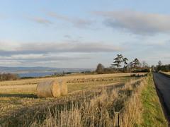 Farmland, Black Isle, New Years Day 2020 (allanmaciver) Tags: hay bales black isle highlands farmland clouds low sun field roadside trees allanmaciver