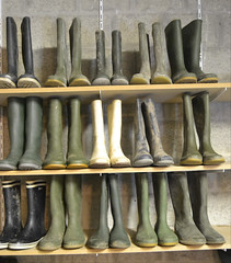 346 -- Collection of wellies -- Rubberboots -- Gummistiefel -- Regenlaarzen (HeveaFan) Tags: rubberboots rubberlaazen 在泥里的靴子橡胶 kaplaarzen ゴム長靴 gummistiefel 威灵顿长靴 stiefel stivali stövlar ブーツ dunlop hevea aigle ripped wornout rainboots regenlaarzen wellies bottes wellworn caoutchouc galoshes wreckled trashed regenstiefel waterlaarzen soles tuinlaarzen loch leaky damaged trouée undicht versleten laarzen wellington kaput mud boue fertig riss gomma trou abgelatscht kaputt lek gumboots boots bottas vredesteinlaarzen vredesteinwellies vredesteinstiefel