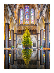 Salisbury Cathedral (Rich Walker Photography) Tags: salisburycathedral salisbury cathedral wiltshire building church churches architecture reflections reflection symmetry canon england efs1585mmisusm eos eos80d christmas