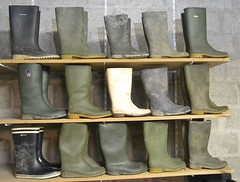348 -- Collection of wellies -- Rubberboots -- Gummistiefel -- Regenlaarzen (HeveaFan) Tags: rubberboots rubberlaazen 在泥里的靴子橡胶 kaplaarzen ゴム長靴 gummistiefel 威灵顿长靴 stiefel stivali stövlar ブーツ dunlop hevea aigle ripped wornout rainboots regenlaarzen wellies bottes wellworn caoutchouc galoshes wreckled trashed regenstiefel waterlaarzen soles tuinlaarzen loch leaky damaged trouée undicht versleten laarzen wellington kaput mud boue fertig riss gomma trou abgelatscht kaputt lek gumboots boots bottas vredesteinlaarzen vredesteinwellies vredesteinstiefel