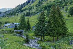 ALPES - FRANCE (Michel Hoinard) Tags: savoie alpes france paysage paysages voyages voyage montagne montagnes mountain mountains landscape landscapes travel alps photography photographie photo michelhoinard