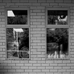 Windows - Film Hasselblad (Photo Alan back Feb 12) Tags: vancouver canada film hasselblad hasselblad503cw vancouverdowntown street streetphotography streetfilm carlzeiss carlzeissplanar80mmf28 reflection blackwhite blackandwhite monochrome bw