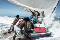 Jangada ao mar (felipe sahd) Tags: praiadecanoaquebrada aracati ceará brasil litoralnordestino pescadores pessoas oceanoatlântico jangada