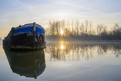 Soft Quiet Morning (NathalieSt) Tags: europe france hautsdefrance hybrid nikon nikonz6 nikonpassion nikonphotography oise picardie pontleveque z6