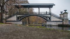 Le pont de napoléon (Lille) (musette thierry) Tags: musette thierry france d800 nikon urbain passage hautsdefrance pasdecalais