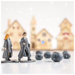 What Went Wrong? (Mandy Willard) Tags: werehere 366the2020edition harrypotter hermionegranger toys models figures blueberries food woodenchristmashouses fakesnow 3662020 day7366 07jan2020