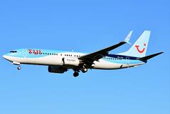 OO-JLO Boeing 737-8K5 TUI Airlines Belgium (BRU/EBBR) (geoffrey.zdcki) Tags: oojlo spotting spotter boeing bru brussels brusselsairport belgium bruxelles belgique tui beauty tuiflybelgium tuifly tuiairlinesbelgium 7378k5 738 nikon aviation landing