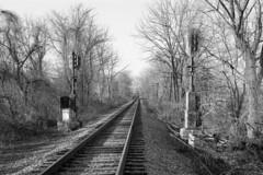 Signals At 41.2 (DJ Witty) Tags: railroad photography rr kodakretinalllc bw blackwhite westernmarylandrailway signals geneseewyoming marylandmidland