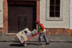 Coyoacan - homme 1 (luco*) Tags: mexique méxico mexico ciudad de ville city cdmx coyoacan rue street homme man hombre