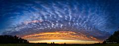 Sonnenuntergang als Panorama (Rüganer Egon) Tags: 2014 samtens inselrügen vorpommern mecklenburgvorpommern deutschland sonnenuntergang panorama rüganeregon