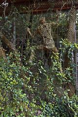 El bosc de Can Ginebreda (svet.llum) Tags: elboscdecanginebreda catalunya cataluña escultura arte bosc bosque planta verano