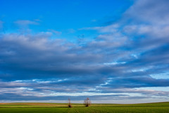 silesian (Bürger J) Tags: landscape silesia outdoor january poland nikon d810 wideangle 20mm fx sky clouds bushes